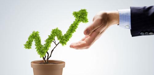 retura_info_pflanzenwachstum